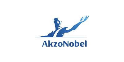 David Shastry Client: Akzo Nobel